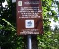 Tesserino unico per la raccolta funghi in Lombardia: le critiche dei Comuni ed il percorso per la sua adozione