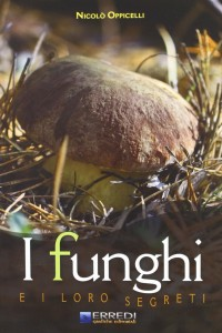 I funghi e i loro segreti