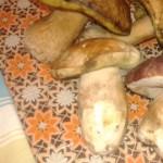 Foto del profilo di zanta denis