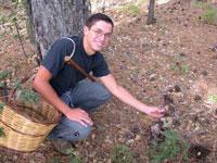 Raccogliere funghi