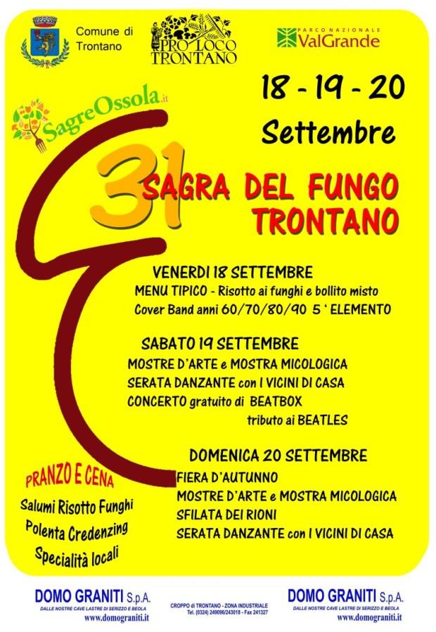 31ª Sagra del Fungo 2015 – Trontano (VB)